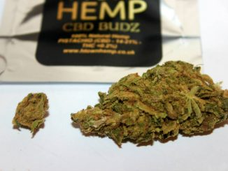 "H-Town Hemp CBD Flower ""Pistachio"" 14-21% CBD Review"