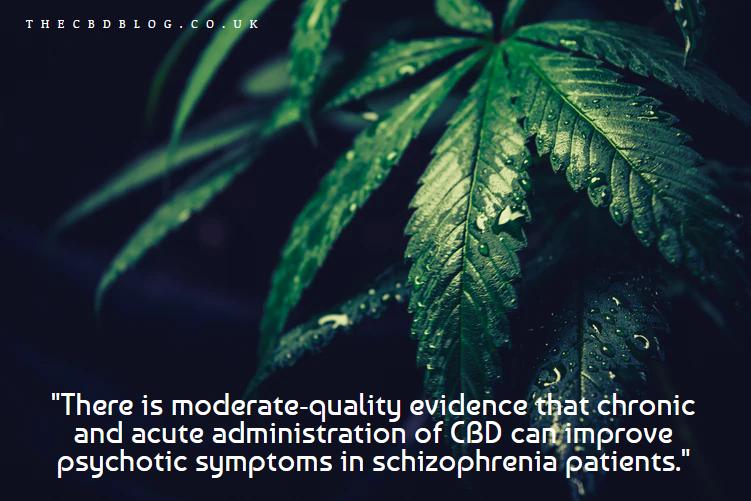 CBD Improves Psychotic Symptoms In Schizophrenia