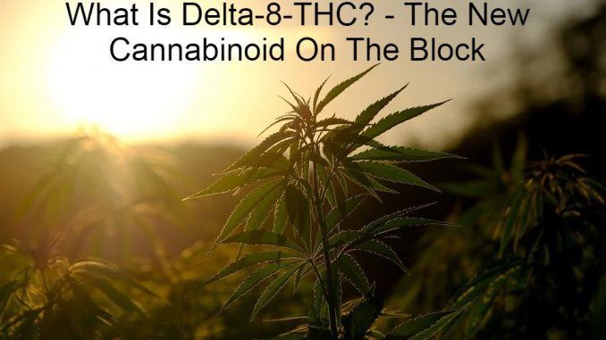What Is Delta-8-THC? - The New Cannabinoid On The Block