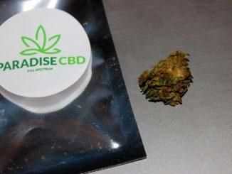 Paradise CBD – Blue Cheese 23% CBD Flower Review